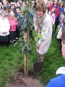 Following the assembly we all joined Mary Commons in the school grounds where she planted a tree to mark her retirement from Saint Aidans.