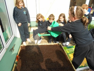 ...eg art class and watering vegetable garden and flower boxes.