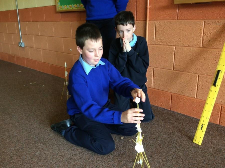 5th Class- Marshmallow Challenge