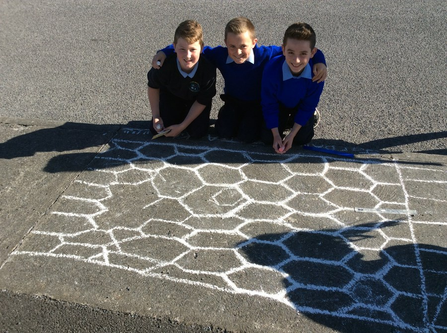 6th Class- Tessellating Shapes