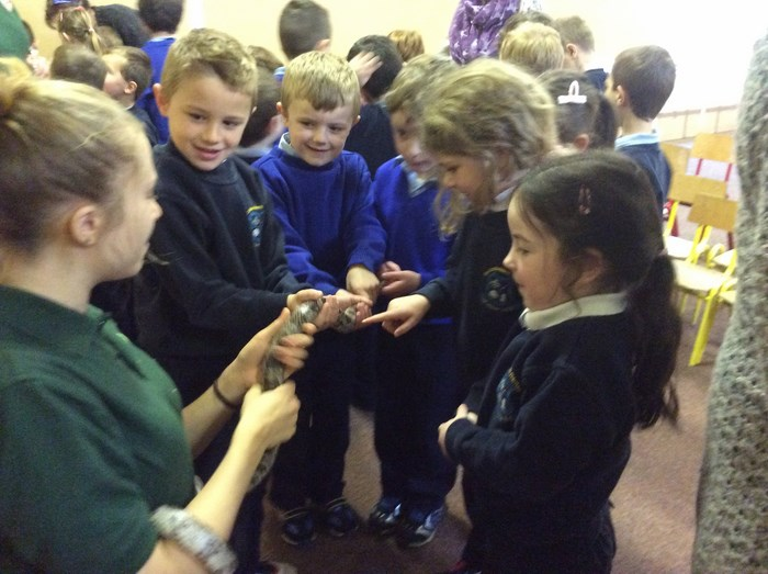 Visit from Kiltimagh Pet Farm