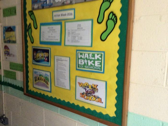 Green School's Board
