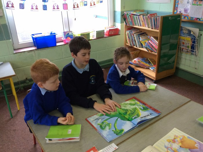 Paired Reading 6th Class &1st Class